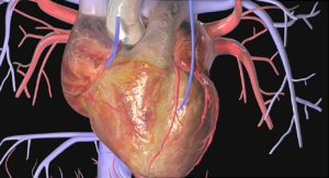 heart attack treatment हार्ट ब्लोकेज का इलाज़