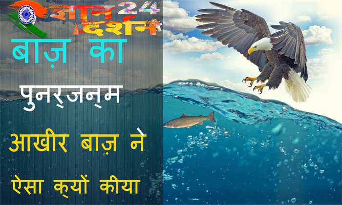 motivational-story-of-success-in-hindi