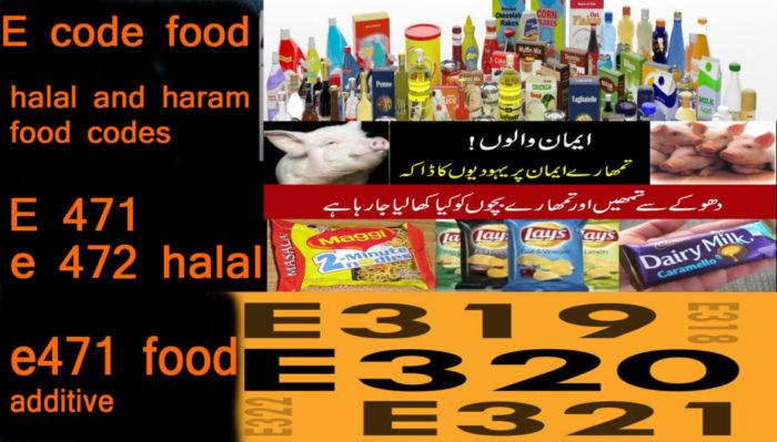 E-code-halal-and-haram